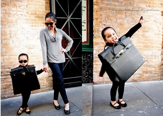 Birkin Bag Costume
