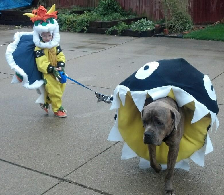 Bowser and Chomp