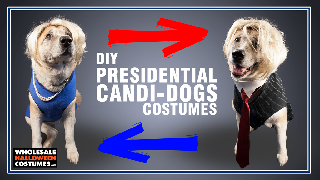 Candidogs DIY Costumes